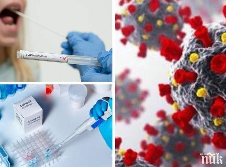 ИЗВЪНРЕДНО В ПИК: 3568 новозаразени с коронавирус при 9093 проби. Излекуваните са 2255, починалите - 162