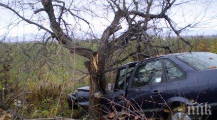 фатален удар младеж без книжка вряза дърво загина