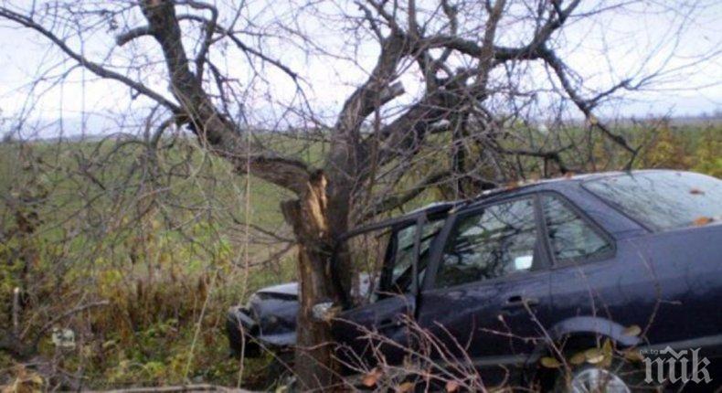 ФАТАЛЕН УДАР: Младеж без книжка се вряза в дърво и загина на място
