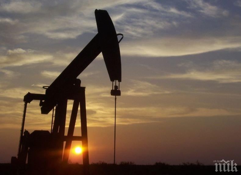 Нефтът поскъпна