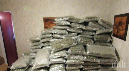 заловиха българин 100 кила марихуана ново село
