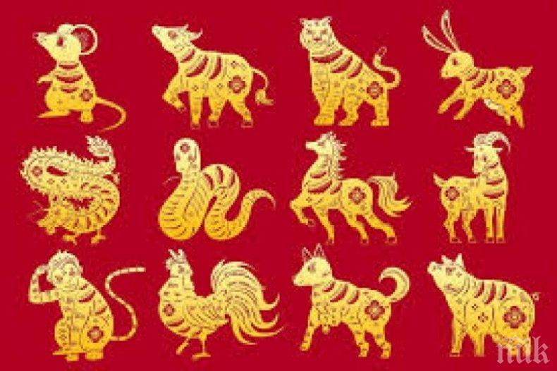 Пълен китайски хороскоп за всяка зодия в годината на Белия метален вол