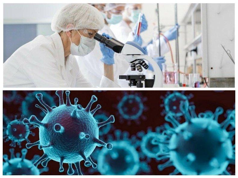РАЗКРИТИЕ: Ето колко трае имунитетът след COVID-19