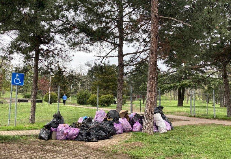 В Ямбол изчистиха лесопарк Боровец от боклуци, десетки доброволци се пуснаха в акцията