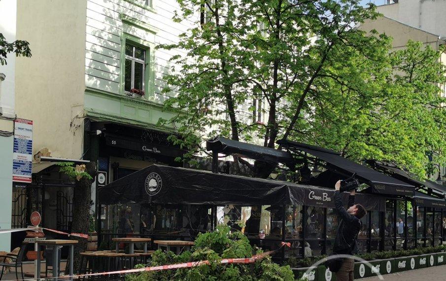 Голямо дърво се сгромоляса върху заведение на Витошка (СНИМКИ)