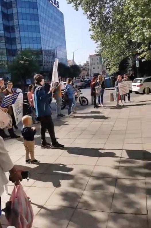 Станислав Недков - Стъки: Мая от Мутрите протестира за норките, БНТ и БНР се късат да я отразяват...