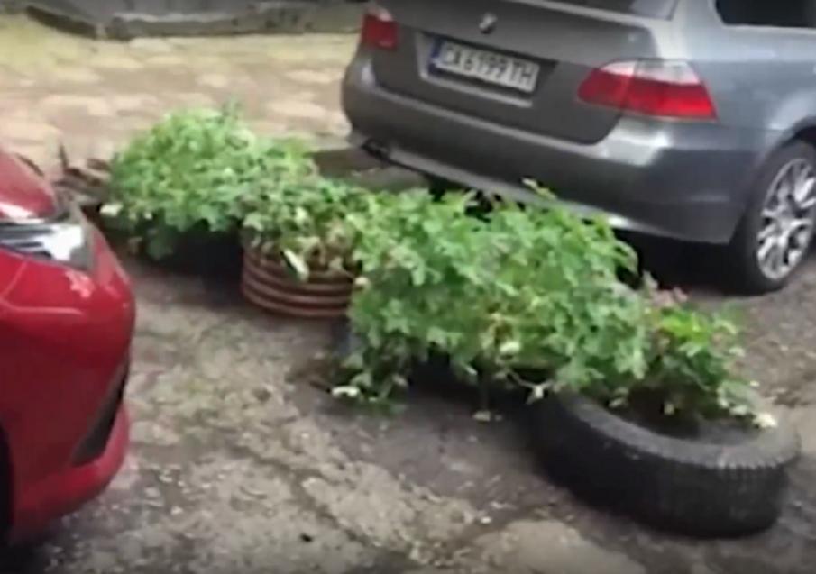 Граждани барикадираха алея в Стрелбище с кашпи заради профучаващи коли, от Столична община им ги взеха
