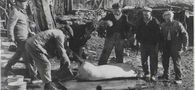 Спомени от соца: За Коледа колехме прасето и пълнехме кървавица