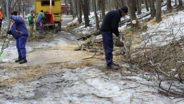 Извозиха пет камиона с отпадъци при акция за почистване на Дановия хълм в Пловдив