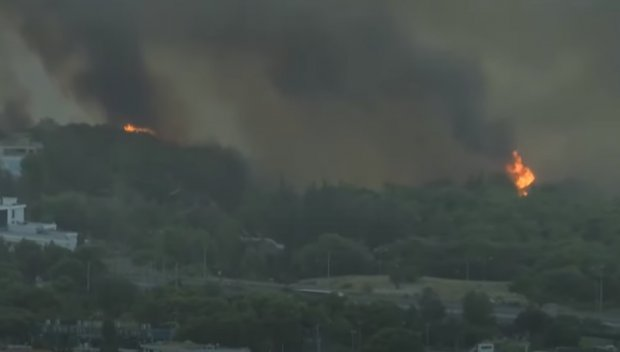 ОГНЕН АД: Пожарът край Атина се разраства - хиляди са евакуирани