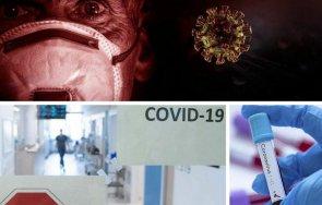 последни данни 733 случая covid нас починалите денонощието