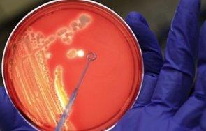 пробив създадоха ранни ембриони човешки клетки