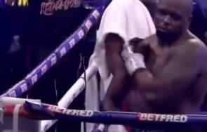британецът дилън уайт върна шампионския пояс световния боксов съвет видео
