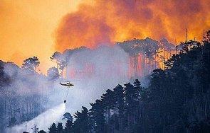 горски пожар унищожи исторически сгради южна африка