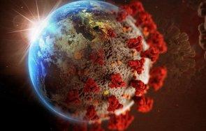 сзо заразените коронавируса света денонощието 721 398