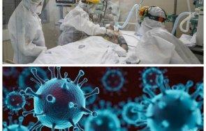 извънредно пик затихва черната пандемия заразените софия последните часа
