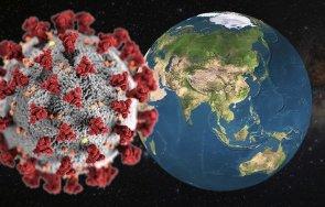 сзо нивата заболеваемост смъртност коронавируса света плато остават високи