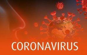 сзо заразените коронавируса света последното денонощие 371 489