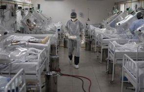 600 случая заразяване коронавируса бразилия денонощие