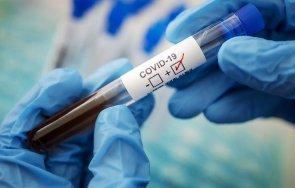 800 новозаразени коронавируса денонощие колумбия