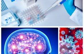 Учени COVID-19 Мозък увреждания Алцхаймер Паркинсон