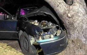 шофьор разби дърво пирдопското село душанци