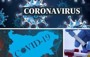 последни данни 115 новозаразените коронавирус нас последните часа