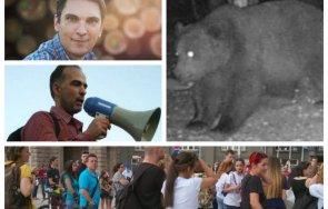 зеленото движение дебъ яхна кръвожадната мечка прави безплатна кампания медиите