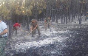 горски пожари североизтока призив внимание жегите