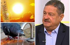 топ климатологът проф георги рачев тревожни новини очаква дълъг период адски жеги охладим морето чай