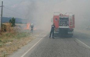 пламна пожар село мурсалево снимки