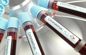 000 новозаразени коронавируса денонощие аржентина
