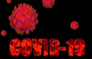 норвегия приравниха коронавируса сезонните инфекции