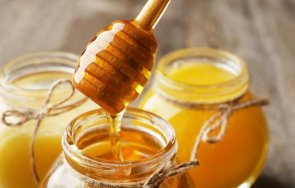 Мед пчелен