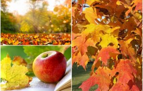 сутринта есенна палитра слънчево топло време температурите стигат градуса карта