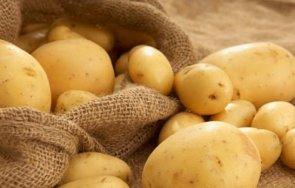 бабх проверява германски българските картофи хипермаркетите