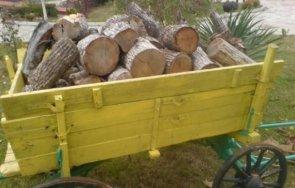 спипаха каруци крадена дървесина павликеско