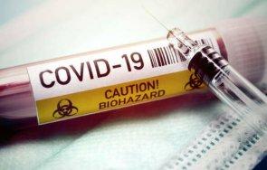 жертвите коронавируса мексико вече 150 000