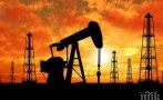 Страните от ОПЕК + решиха да не увеличават производството на петрол