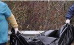 Плъхове изгризаха трупа на обесен в пловдивско село