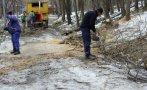 извозиха пет камиона отпадъци акция почистване дановия хълм пловдив
