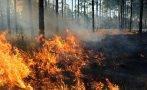 турция страшно големите пожари разрастват