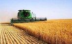 завърши жътвата пшеницата ечемика монтанско
