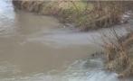 Отново замърсяват река Русенски Лом с химически оцветител